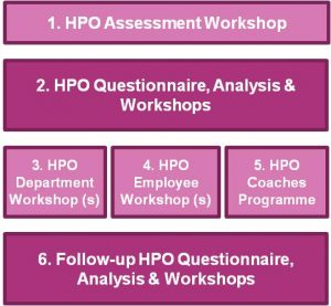 HPO Diagnose process (figure 2.2).png