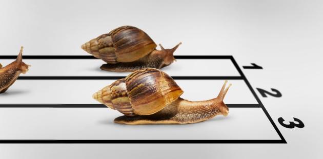 Slow Management - Verbeteren belangrijker dan winnen