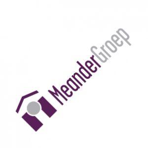 MeanderGroep - De HPO-scan als leidraad voor een grote verandering
