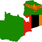 Creating high performance governmental organizations in Zambia