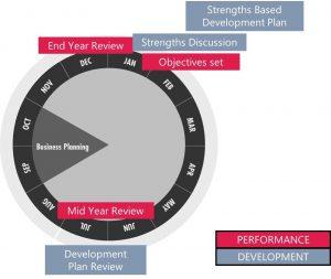 Figuur 2: Het ontwikkelings- en prestatiesturingssysteem van Red Bull